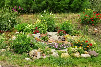 Permakultur im Garten