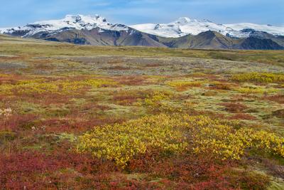 Herbst im Nationalpark Vatnajökull