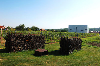 Loisium Wein.Kunst.Garten