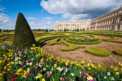Blumen-Schloss-Versailles