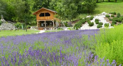 Schaubrennerei & Lavendelfeld