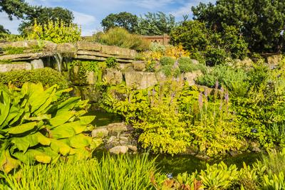 Steingarten, Royal Botanic Gardens