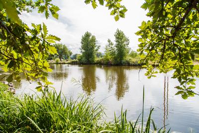 Park Moor