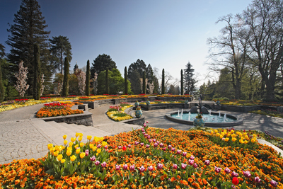 Blumeninsel Mainau 2.jpg
