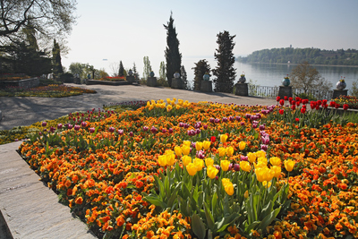 Blumeninsel Mainau 4.jpg
