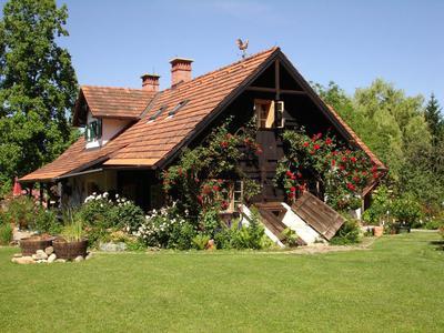 Mein Rosengarten