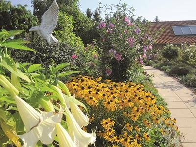 Harald und Christines Garten