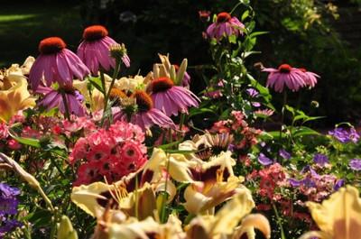 Gartenkult und Beetgeflüster