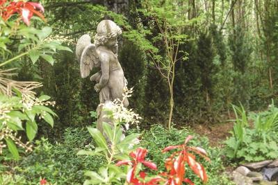 Magonia - Die Poesie eines alten Gartens