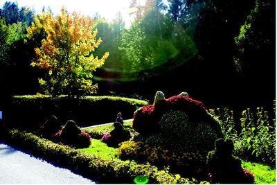 Pöllauberg Themengärten