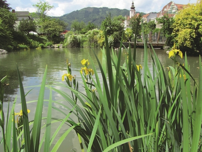 Volkshaus-Lendpark-Mauritiuspark Frohnleiten