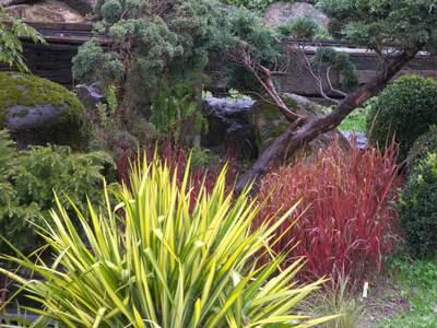 Seerosen- und Wassergarten Park