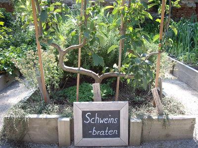 Schloss Hof Garten, Kräuter Schweinsbraten