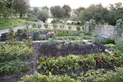 Weinviertler Garten