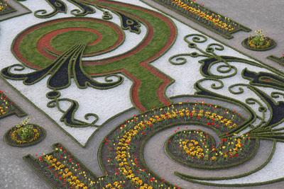 Schloss Hof, Garten Broderiebeet, Terrasse