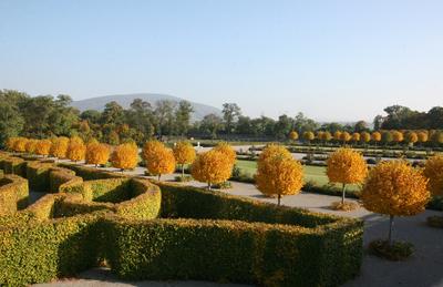 Terrasse Schloss Hof im Herbst