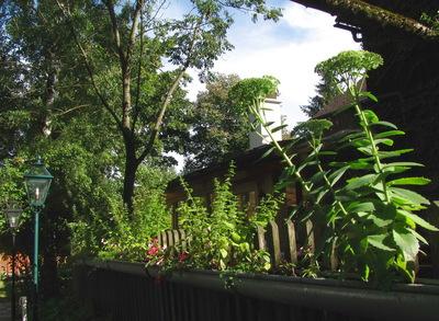 Nostalgiegarten