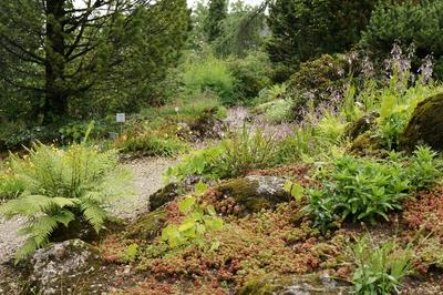 Botanischer Garten Linz, by GardenTravceller, flickr.com