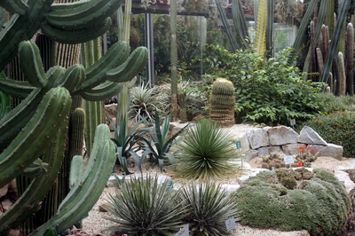 Botanischer Garten Linz,  by GardenTravellor, flickr.com
