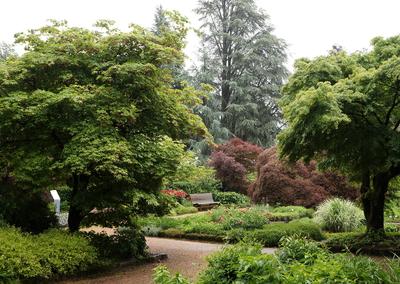 Botanischer Garten Linz, by GardenTraveller, flickr.com