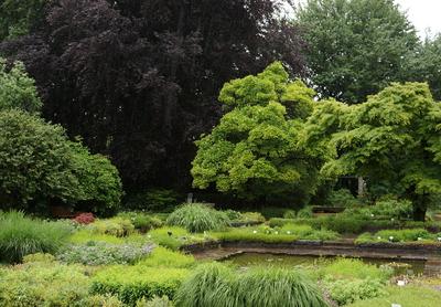 Botanischer Garten, Linz,  by GardenTreveller, flickr.com