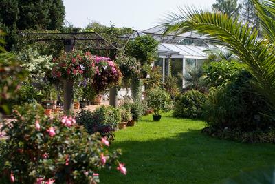 Botanischer Garten Linz im Sommer, by Jakob Hürner, flickr.com