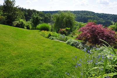 Landschaftsgarten, (c) Zenz Gärten