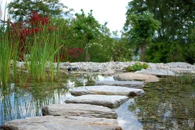 Schwimmteichbau, (c) Gartenzentrum Edler