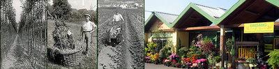 Viellieber Gartengestaltung & Floristik, (c) Viellieber