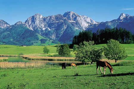 Tennengebirge Sommer
